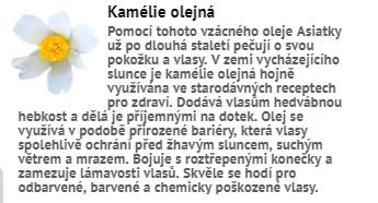 kamelie_olejna